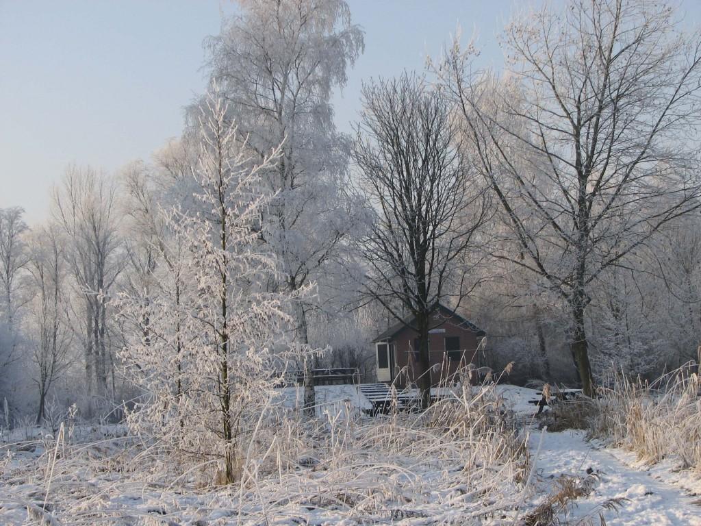Winter 2015-2016